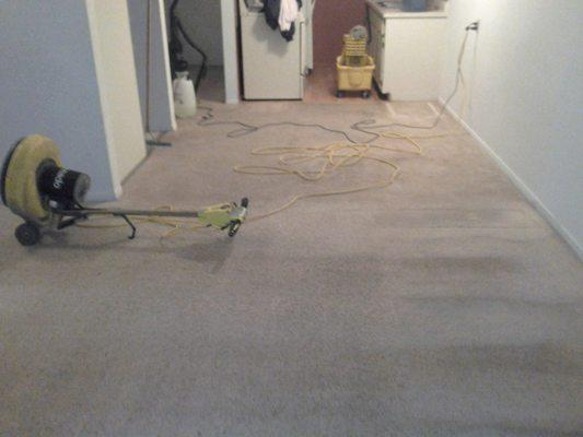 Brian's Carpet Cleaning