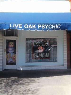 Live Oak Psychic