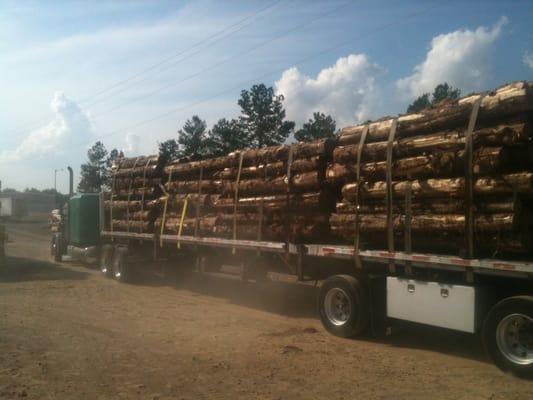 Discount Cedar
