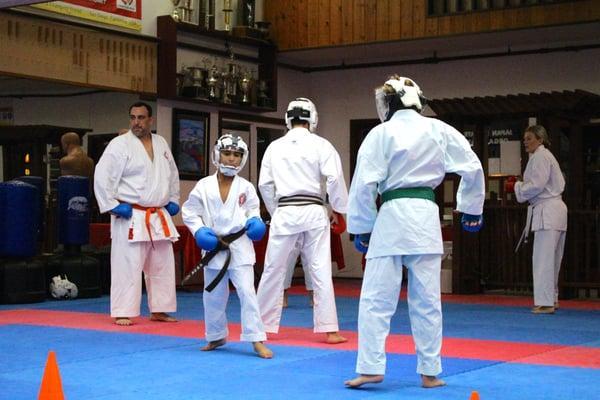 Japan Karate Do Organization