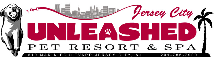 Jersey City Unleashed