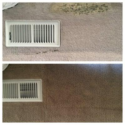 Five Star Carpet Cleaning & Dyeing