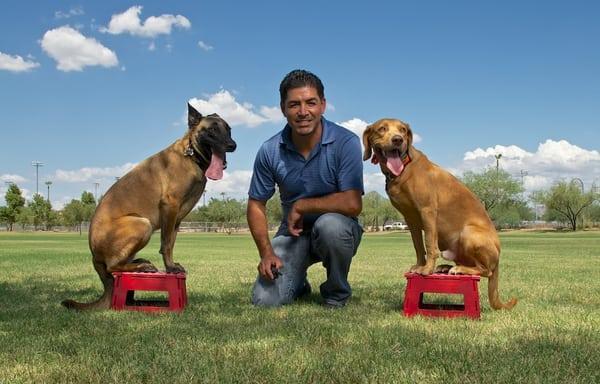 Jonny Be Good Dog Training Service
