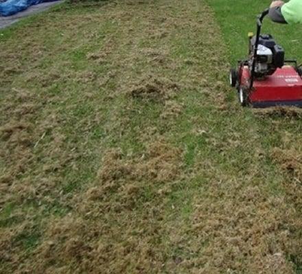 Utah Lawn Aeration