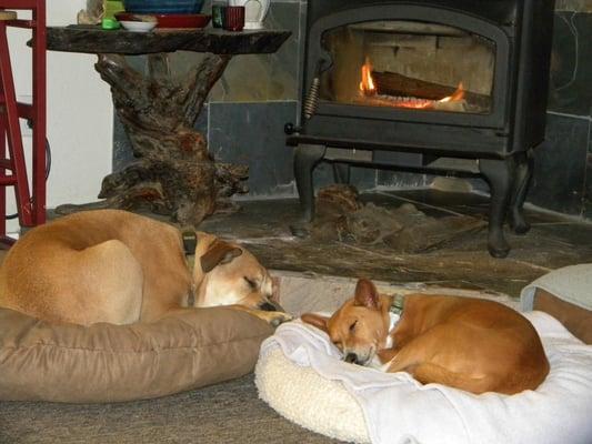 Sunnybrook Farm Holistic Pet Care