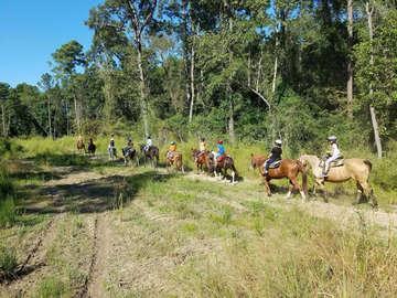 Loveland Ranch