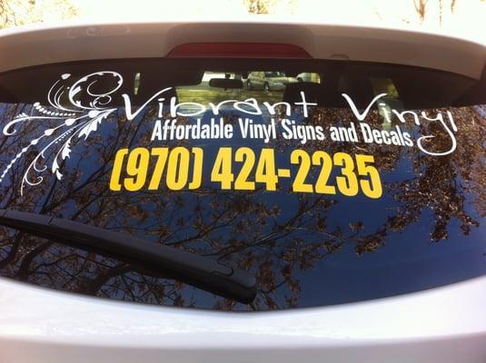 Vibrant Vinyl