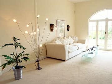 Steamco Carpet Cleaning