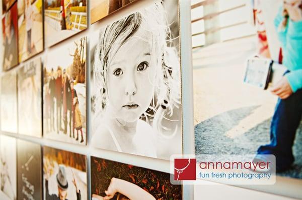Anna Mayer Photography