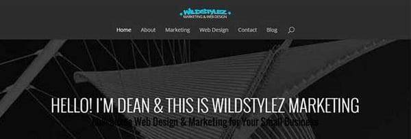 Wildstylez Mad Skills Marketing