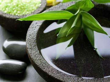 Healing for Balance Alternative Medicine