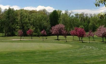 Viking Meadows Golf Club