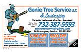 United Tree Service And Landscaping LLC