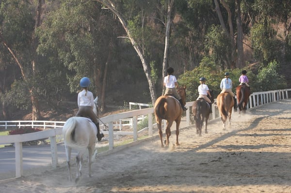 Westside Riding School