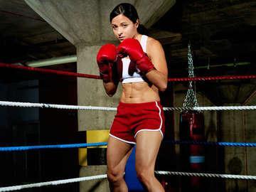 Steele Boxer
