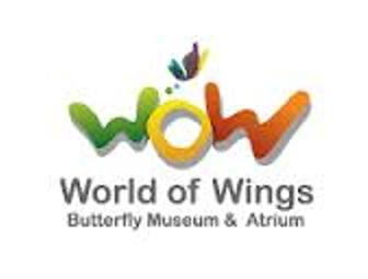 World Of Wings