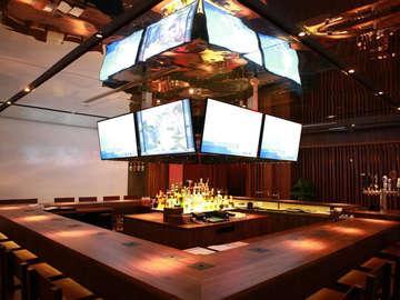 Zebra Lounge II
