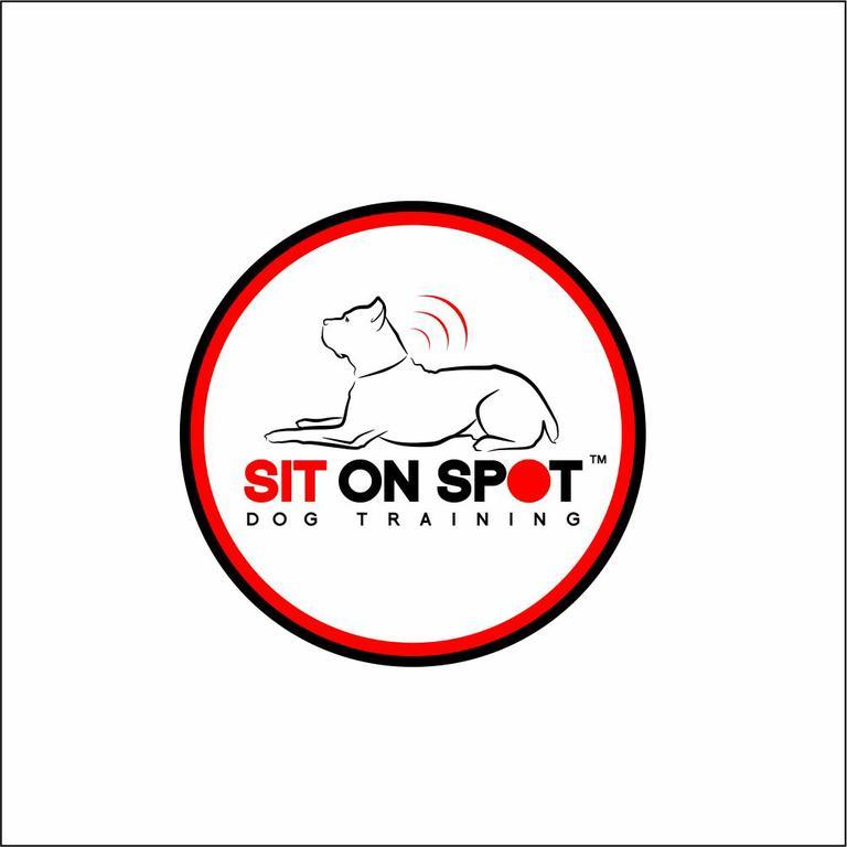 Sit On Spot Dog Training