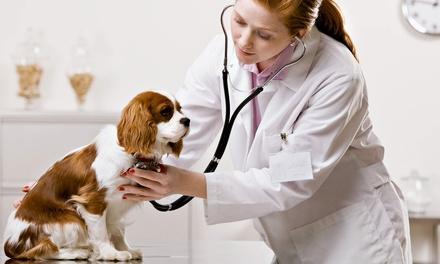 Heart of Dixie Veterinary Clinic