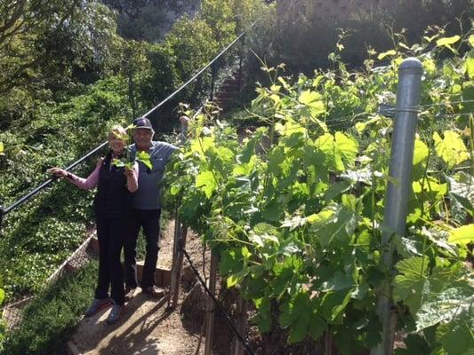Maness Vineyards and Casi Cielo Farm