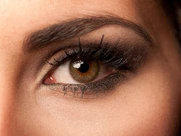 Ultimate Lash and Brow