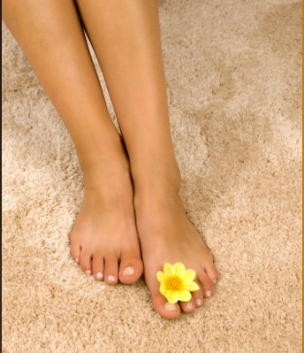 Green Solutions Organic Carpet Cleaning