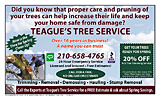Teague's Tree Service