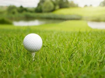 David Stephens Golf