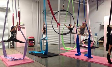 Polecats Aerial Fitness