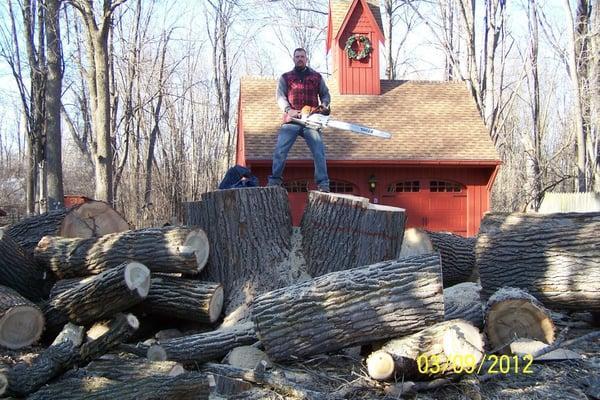 The Veteran Tree & Stump Removal