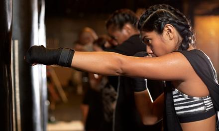 Soultrain Boxing and Fitness