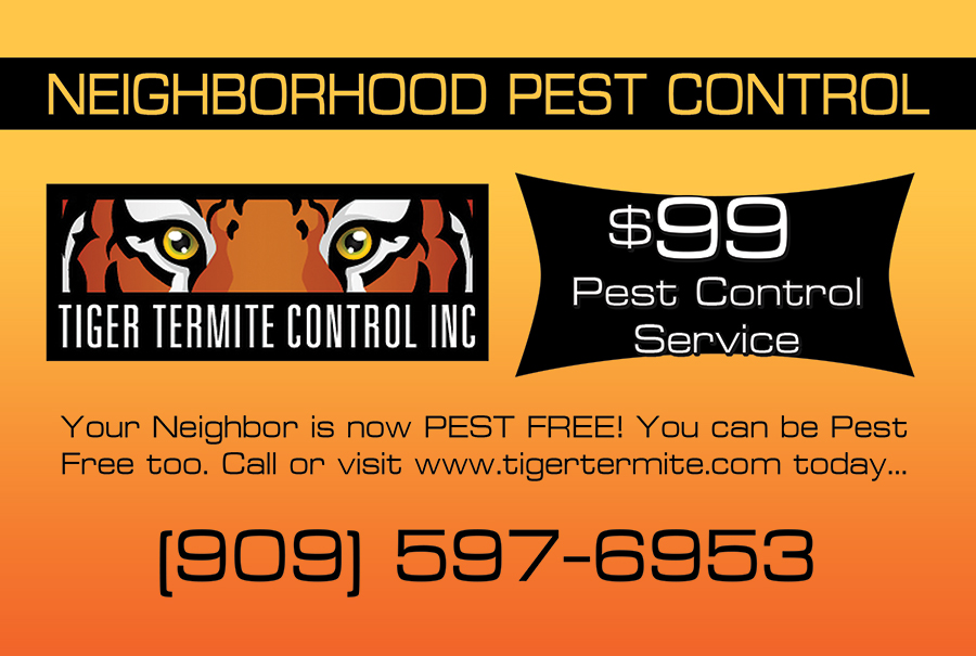 Tiger Termite and Pest Control