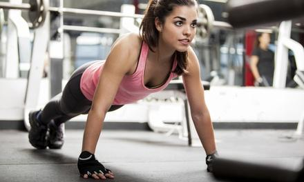 Undisputed Fitness & Training Center