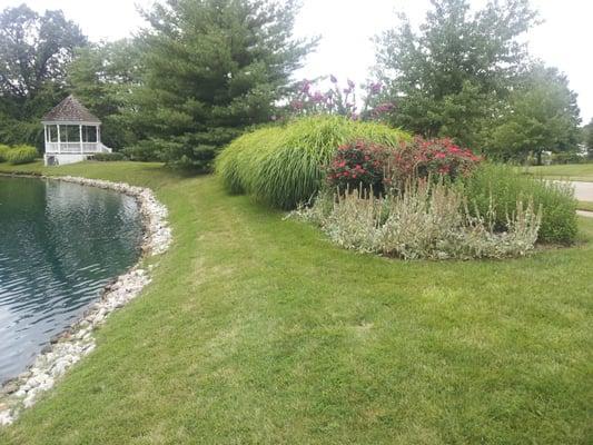 Clean Cut Lawns