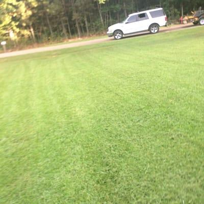 L&A Lawn and Tractor Service