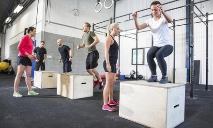 Levee CrossFit