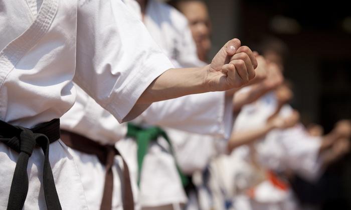 Victory Martial Arts TX