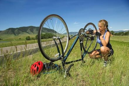 Trackside Cycle