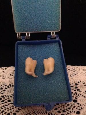 St Mary Family Dental
