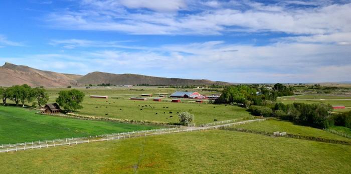 Susie Q Ranch