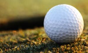 Larry McGrath Golf Instruction