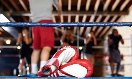 Kickboxing Fit America