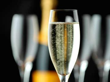 The Champagne Sommelier
