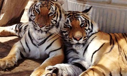 Forever Wild Exotic Animal Sanctuary