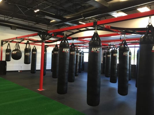 UFC Gym Flower Mound