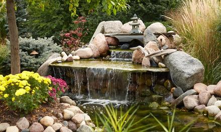 Tampa Bay Ponds & Rocks