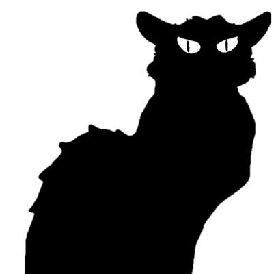 Black Cat Computer Services