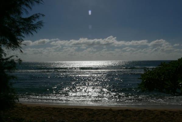 Maui Travel and Transportation