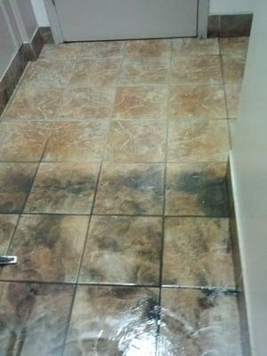 2Fresh Tile Cleaning