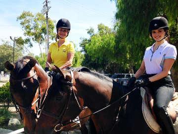 Woodland Farms Equestrian